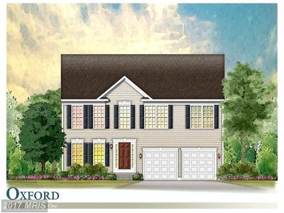 Lexington Park Single Family Home For Sale: 46180 Springtime Lane