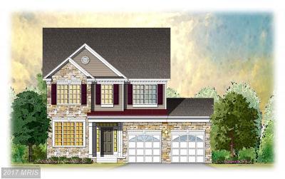 Lexington Park Single Family Home For Sale: 22264 Scott Circle