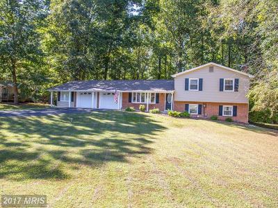 Mechanicsville Single Family Home For Sale: 28685 Hancock Drive