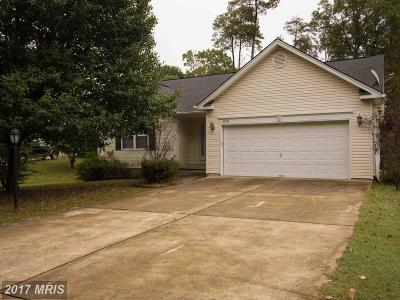 Lexington Park Single Family Home For Sale: 21048 Rickys Place