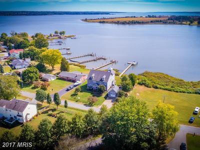 Saint Marys Single Family Home For Sale: 40359 Beach Drive