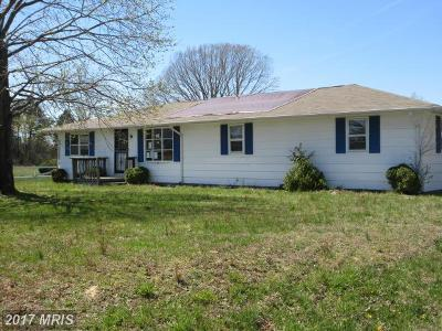 Lexington Park Single Family Home For Sale: 20883 Willows Road