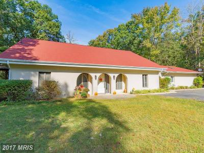 Lexington Park Single Family Home For Sale: 48340 Mattapany Road