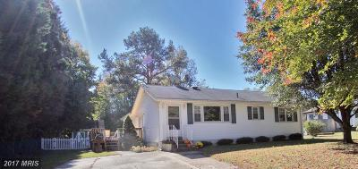 Mechanicsville Single Family Home For Sale: 40071 Golden Beach Road
