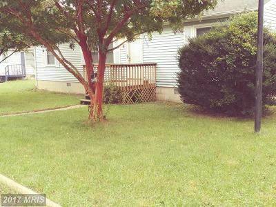 Lexington Park Single Family Home For Sale: 22104 Towey Court