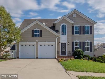 Saint Marys Single Family Home For Sale: 24676 Broad Creek Drive