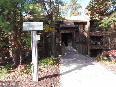 Saint Marys Rental For Rent: 23241 Rosewood Court #1015