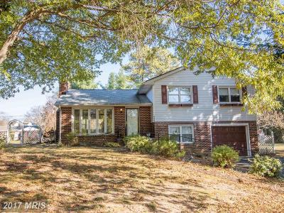 Leonardtown Single Family Home For Sale: 41480 Charles Street