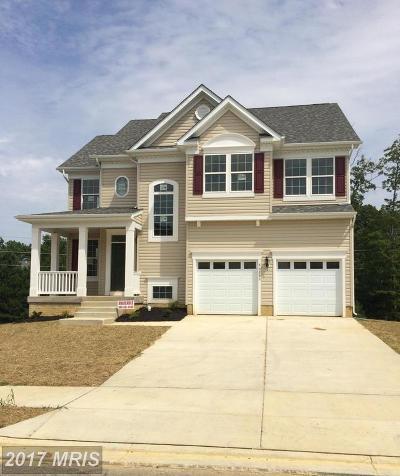 Lexington Park Single Family Home For Sale: 46159 Seabiscuit Court