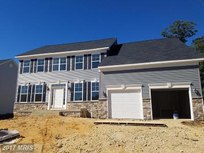 Lexington Park Single Family Home For Sale: 20797 Simmons Street