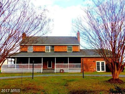Mechanicsville Single Family Home For Sale: 25800 Shamrock Lane