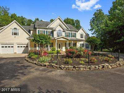 Saint Marys Single Family Home For Sale: 17684 Driftwood Lane