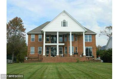 Mechanicsville Single Family Home For Sale: 35415 Army Navy Drive