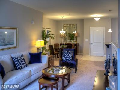 Saint Marys Condo For Sale: 23540 Fdr Boulevard #305