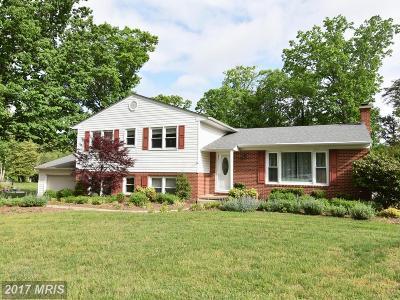 Lexington Park Single Family Home For Sale: 22903 Chestnut Road