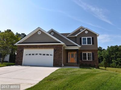 Lexington Park Single Family Home For Sale: 21465 Colleen Place