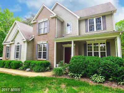 Lexington Park Single Family Home For Sale: 46431 Hilton Ridge Drive
