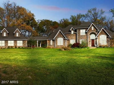 Saint Marys Single Family Home For Sale: 16440 Ball Point Road
