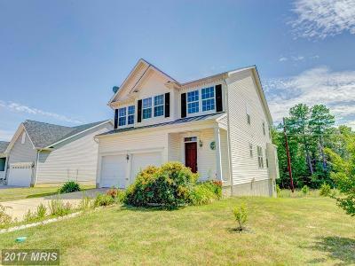 Lexington Park Single Family Home For Sale: 22405 Alydar Drive