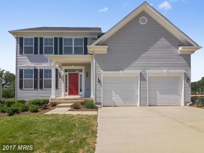 Lexington Park Single Family Home For Sale: 20701 Hilton Run Court #35