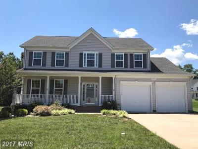 Lexington Park Single Family Home For Sale: 46943 Pembrooke Street N