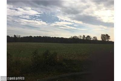 Mechanicsville Residential Lots & Land For Sale: 38953 Emmart Lane