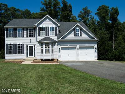 Lexington Park Single Family Home For Sale: 18470 Matthews Drive