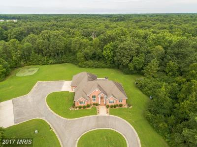 Saint Marys Single Family Home For Sale: 20460 Piney Point Road