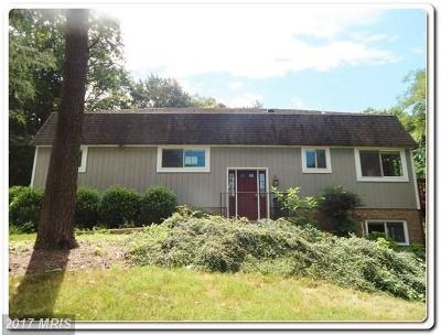 Mechanicsville Single Family Home For Sale: 26015 Shenandoah Drive
