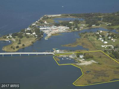 Chance Single Family Home For Sale: 23407 Deal Island Road