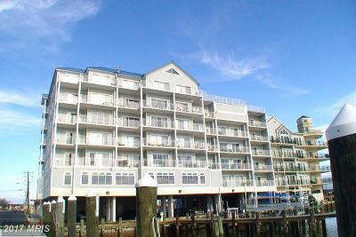 Crisfield Condo For Sale: 1021 Main Street #602