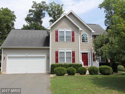 Fredericksburg Rental For Rent: 4002 North Andover Lane