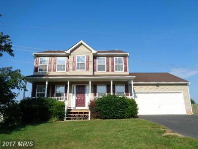 Fredericksburg Single Family Home For Sale: 12014 Setter Drive