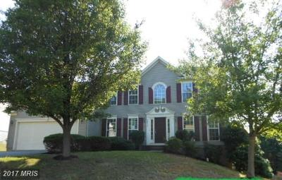 Fredericksburg Single Family Home For Sale: 3511 Carlyle Court