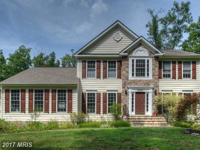 Spotsylvania Single Family Home For Sale: 8301 Allie Cat Way