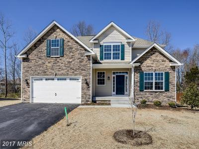 Fredericksburg Single Family Home For Sale: 10911 Stacy Run