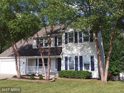 Fredericksburg Single Family Home For Sale: 10911 S Lamont Court