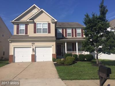 Fredericksburg Single Family Home For Sale: 5613 Joshua Tree Circle