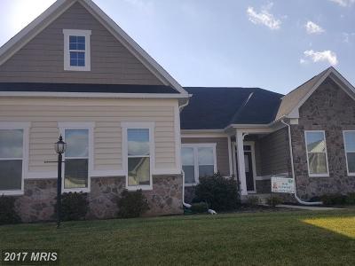 Spotsylvania Rental For Rent: 2528 Cornell Drive