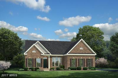Fredericksburg Single Family Home For Sale: 1 Monterey Court