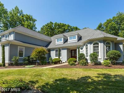 Spotsylvania Single Family Home For Sale: 10504 Turning Leaf Lane