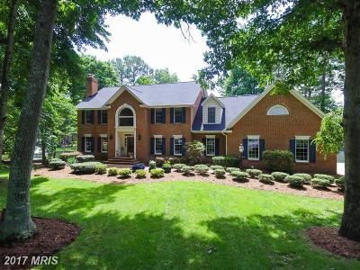Spotsylvania Single Family Home For Sale: 11407 Meade Point