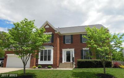 Fredericksburg Single Family Home For Sale: 12003 Buckminster Court