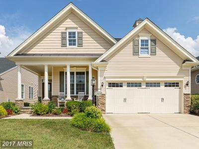 Fredericksburg Single Family Home For Sale: 12614 Cannon Crest Drive