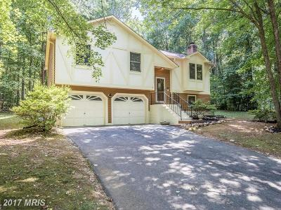 Spotsylvania Single Family Home For Sale: 12810 Lake Wilderness Lane