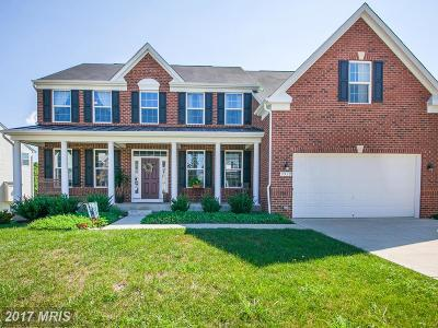 Fredericksburg Single Family Home For Sale: 9929 Box Oak Court