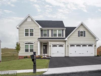 Fredericksburg Single Family Home For Sale: 5 Hermitage Drive