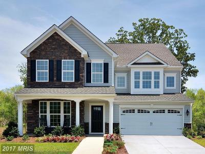 Fredericksburg Single Family Home For Sale: 6 Hermitage Drive