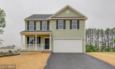 Single Family Home For Sale: 2418 Horseshoe Bend Drive