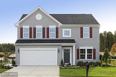 Fredericksburg Single Family Home For Sale: 1 Wood Creek Circle